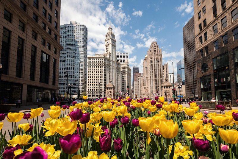 Melhor época para conhecer Chicago: primavera