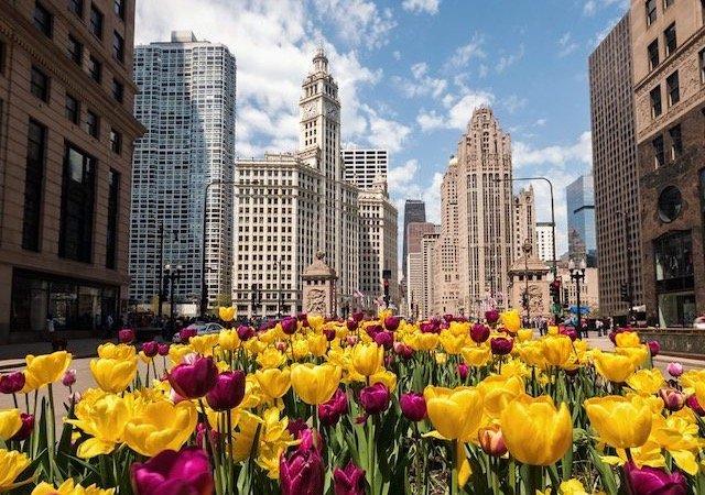 Clima e temperatura em Chicago