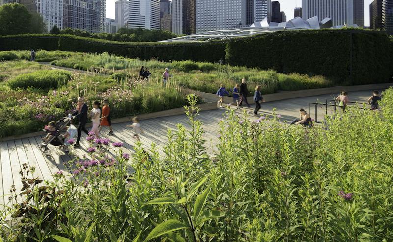 Millennium Park em Chicago: Lurie Garden