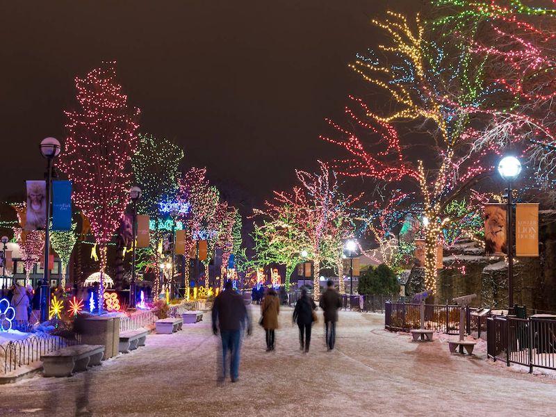 Natal em Chicago: luzes de Natal no Lincoln Park Zoo