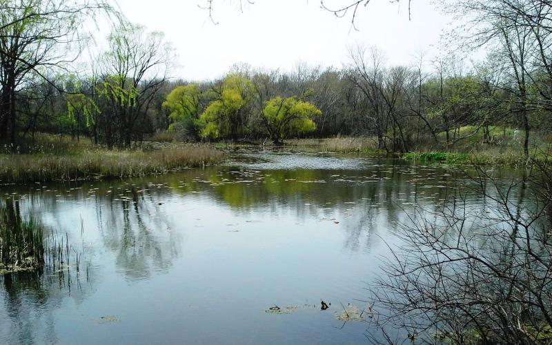 Rio no North Park Village Nature Center em Chicago