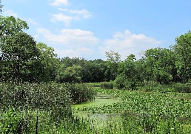 Vista do North Park Village Nature Center em Chicago