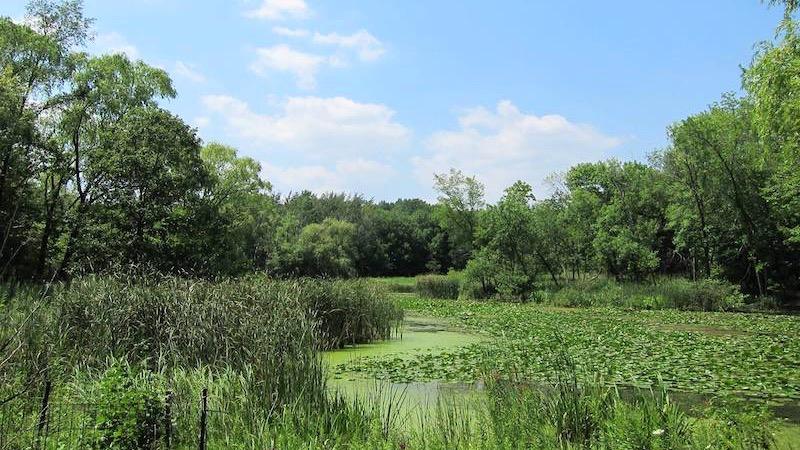 Vista do North Park Village Nature Center em Chicago