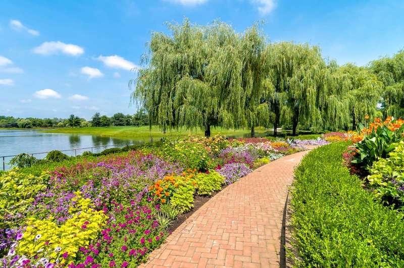Jardim Botânico de Chicago (Chicago Botanic Garden)